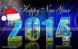 Happy-New-Year-2014-Pictures-7